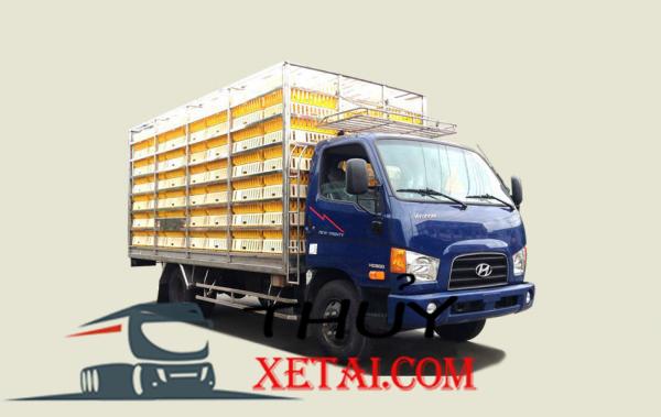 Xe tải Hyundai 7 tấn HD800 chở gia cầm